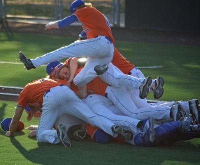 Ridgefield baseball wins district title