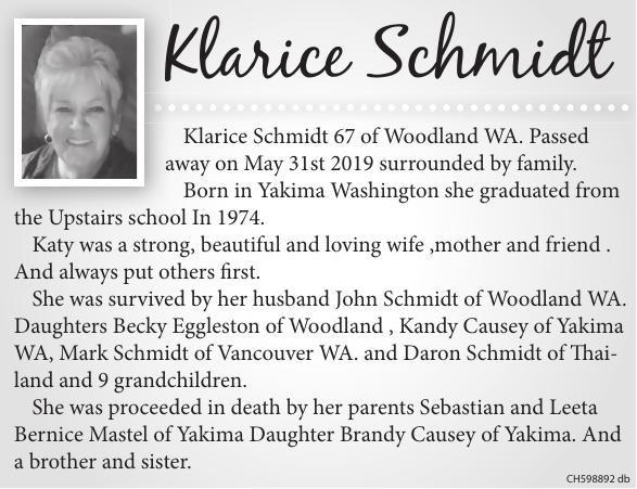 Klarice Schmidt.pdf