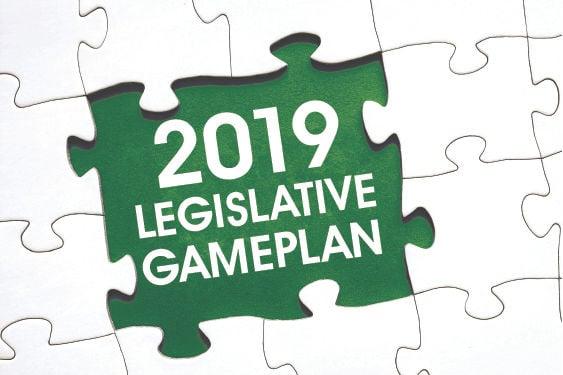 2019 Legislative Gameplan.jpg
