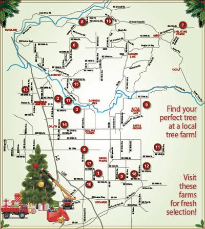 U Cut Christmas Trees.U Cut Christmas Tree Farms Are Ready For Holidays