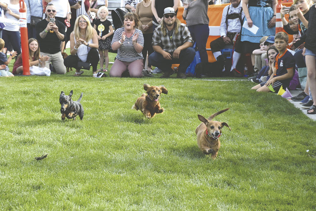 Running Wieners