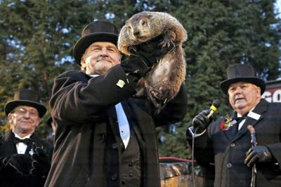 Punxsutawney Phil sees shadow: 'Six more weeks of winter to go'