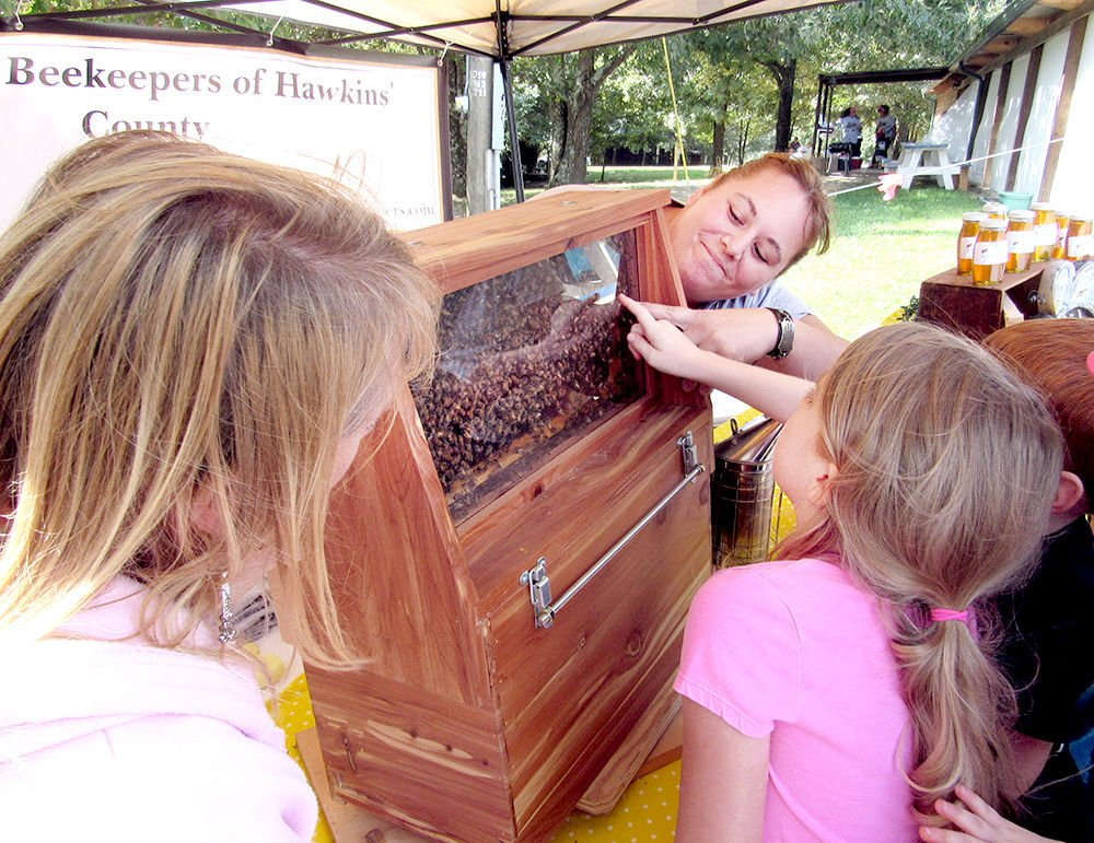 Beekeepers explain how honey is made
