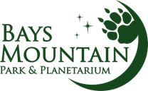 Bays Mountain Cinema Under The Stars