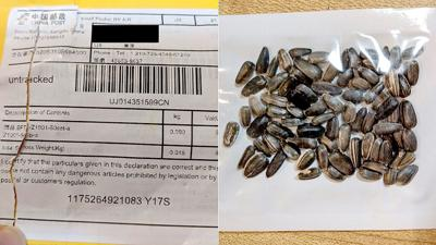 Chinese seed packages
