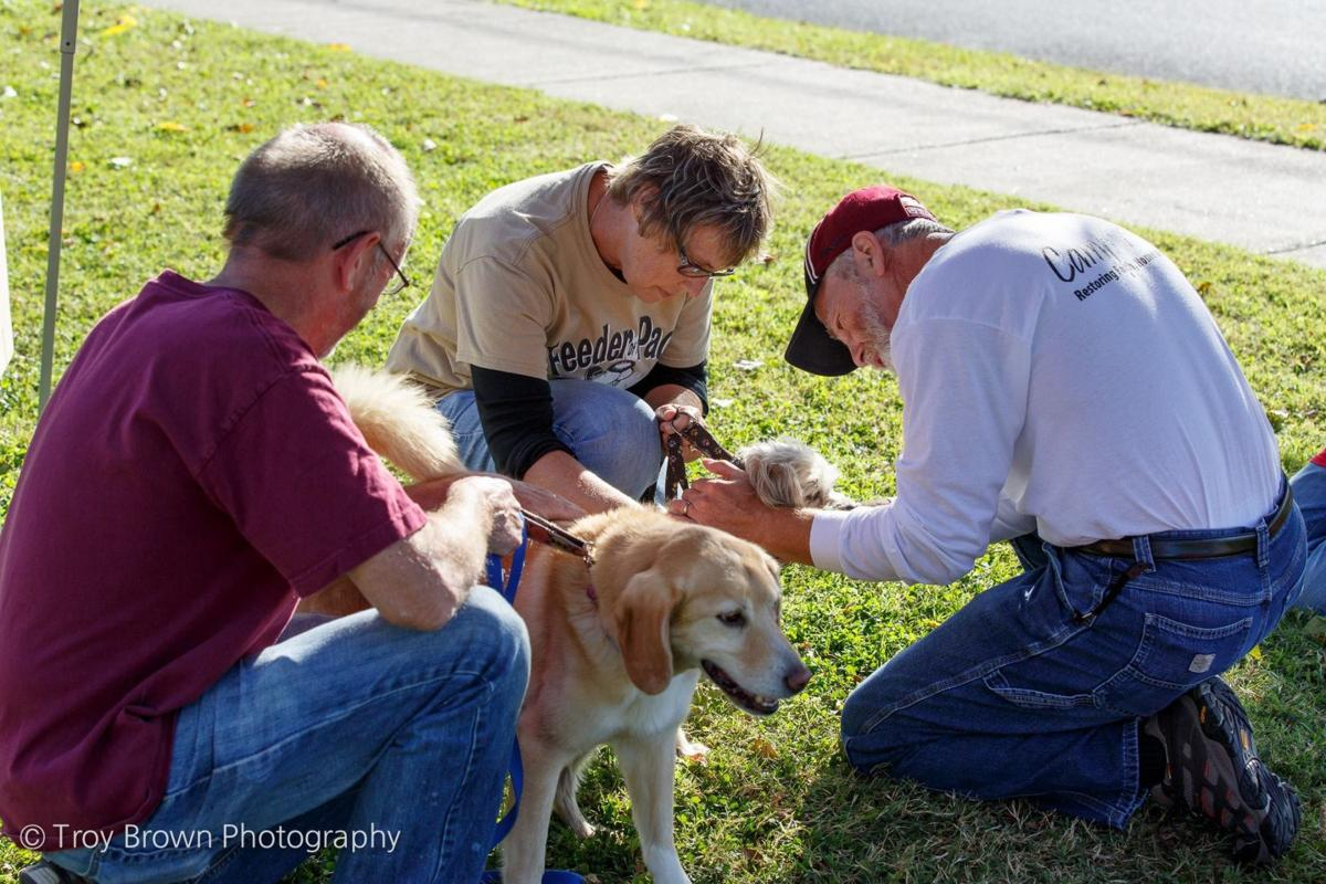Blessing of the Animals, set for Oct. 1, 2017