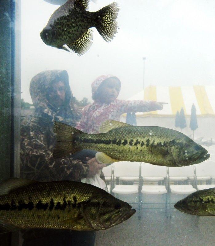 092415-spt-otd-huntfish-rogers-largemouthbass-2011.jpg