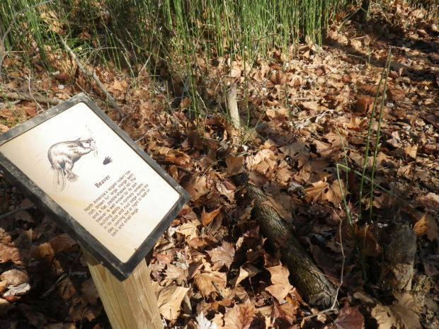 Green Earth adds interpretive trail signs