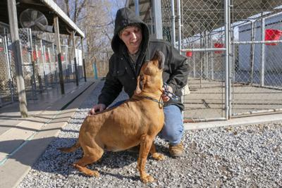These Southern Illinois shelter pets have been waiting over
