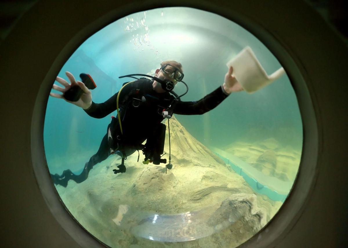 aquarium-stl-02.jpg