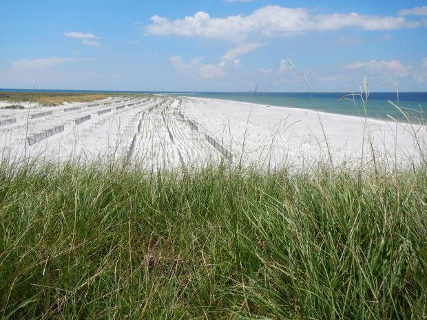 getaways-gulfcoast-seashore