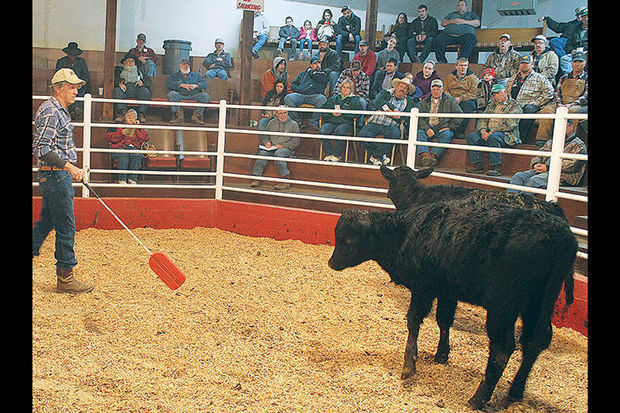 Buyers, sellers still flock to sale barns to trade livestock