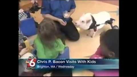 Viral video: WPSD Local 6 anchor cracks up during broadcast at Chris
