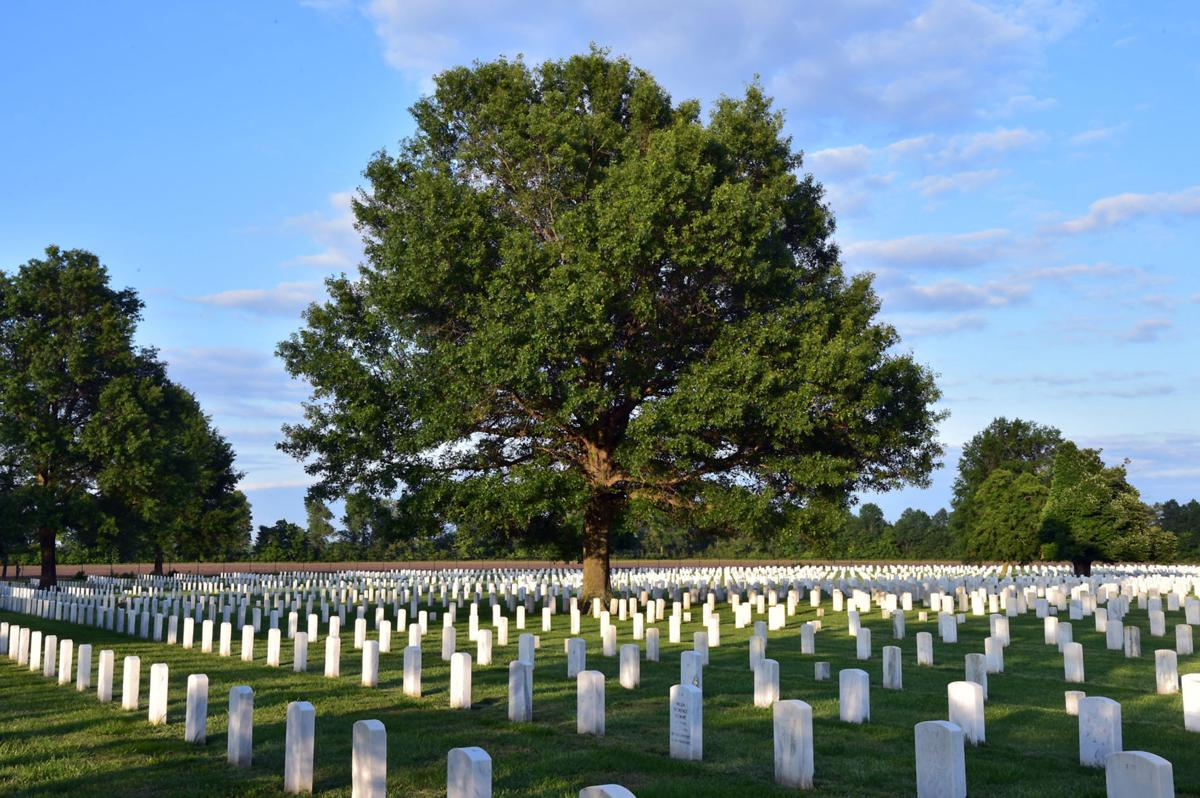 Illinois pulaski county mounds - Mound City National Cemetery
