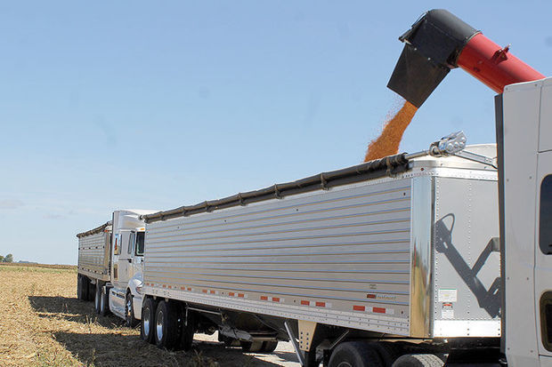 Illinois harvest conditions vary, field to field