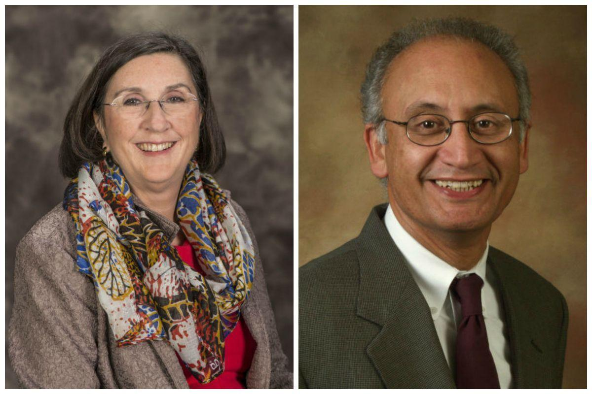 Two chancellor finalists to meet with SIU trustees
