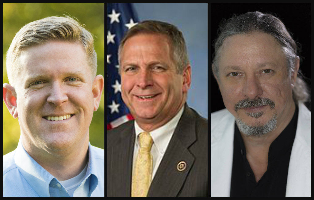 12th District candidates 2018