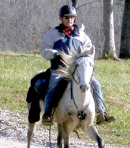otd ENDURANCE HORSE