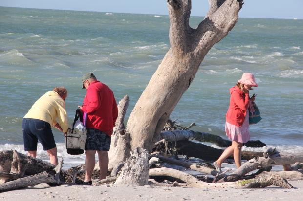 Florida Day 6 - shelling 008.jpg