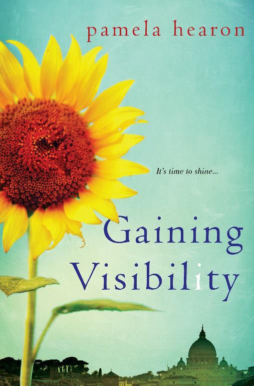 Gaining Visibility Book Cover