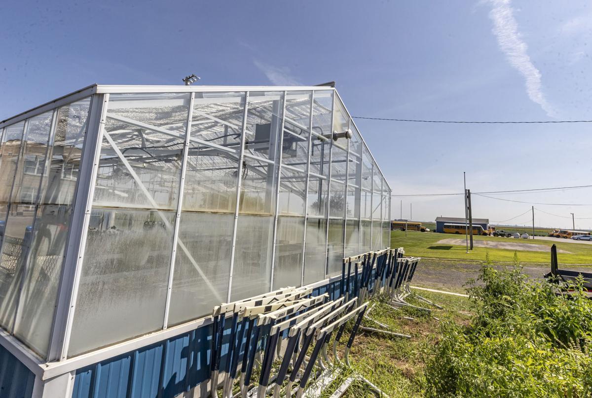 greenhouse 1 082321.JPG