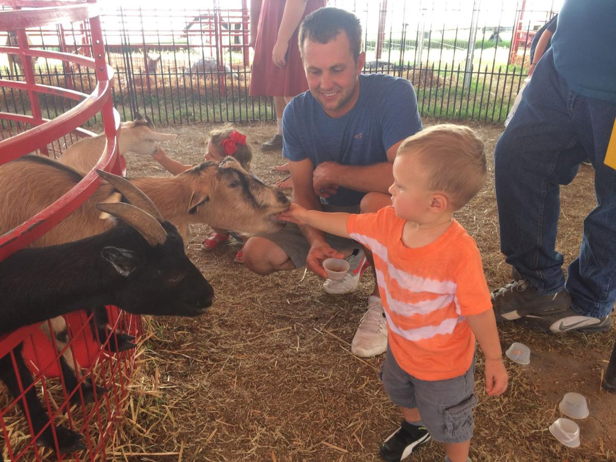 Du Quoin State Fair Petting Zoo