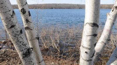 attleboro's manchester reservoir