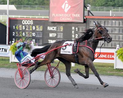 Spirit of Mass Horse Race