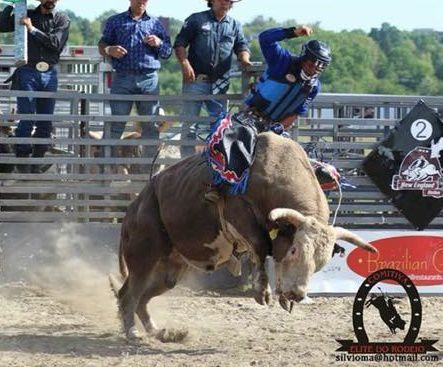 Norton Bull Rider Killed In Accident Quot Was A Real Cowboy