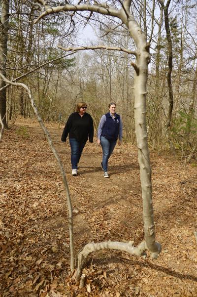 Walk in Woods Weather 3-27-18