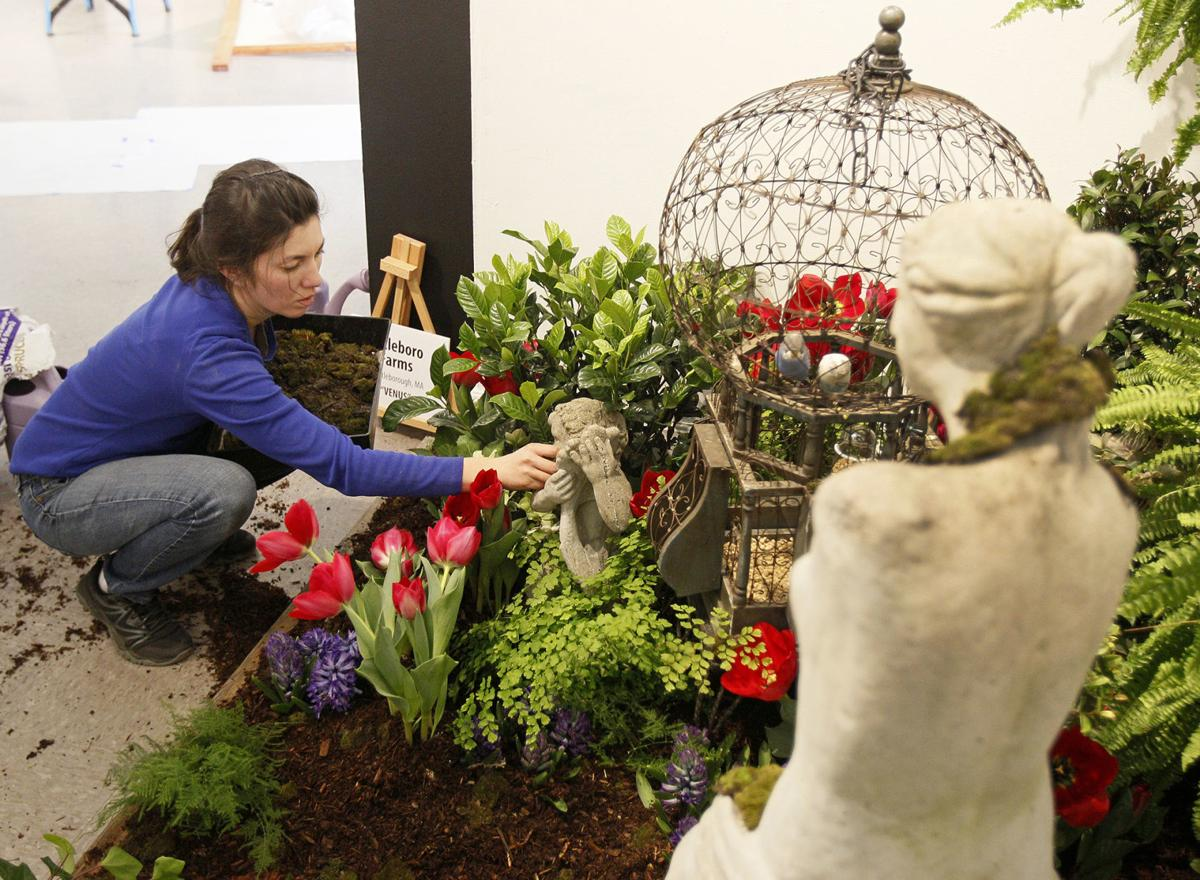 Flower Show Preview