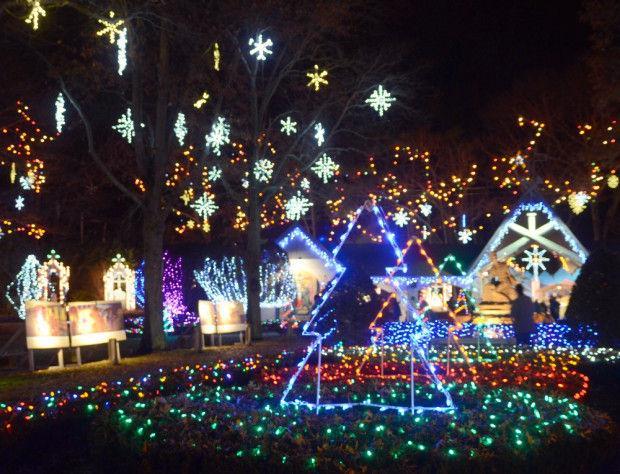 Christmas Clear Lights