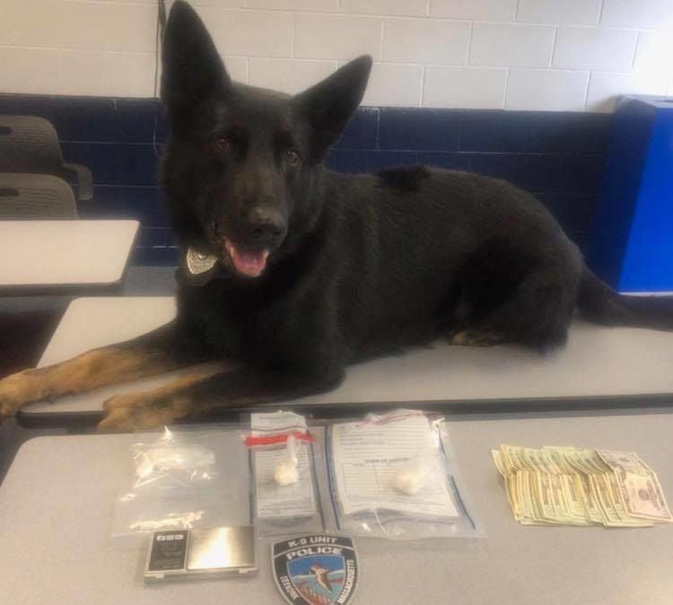 K-9 mattis with drug evidence
