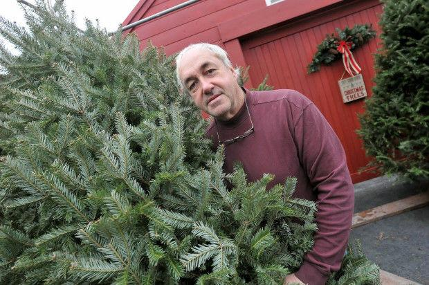 Millers Christmas Tree Farm.All They Want For Christmas Is Rain Local News