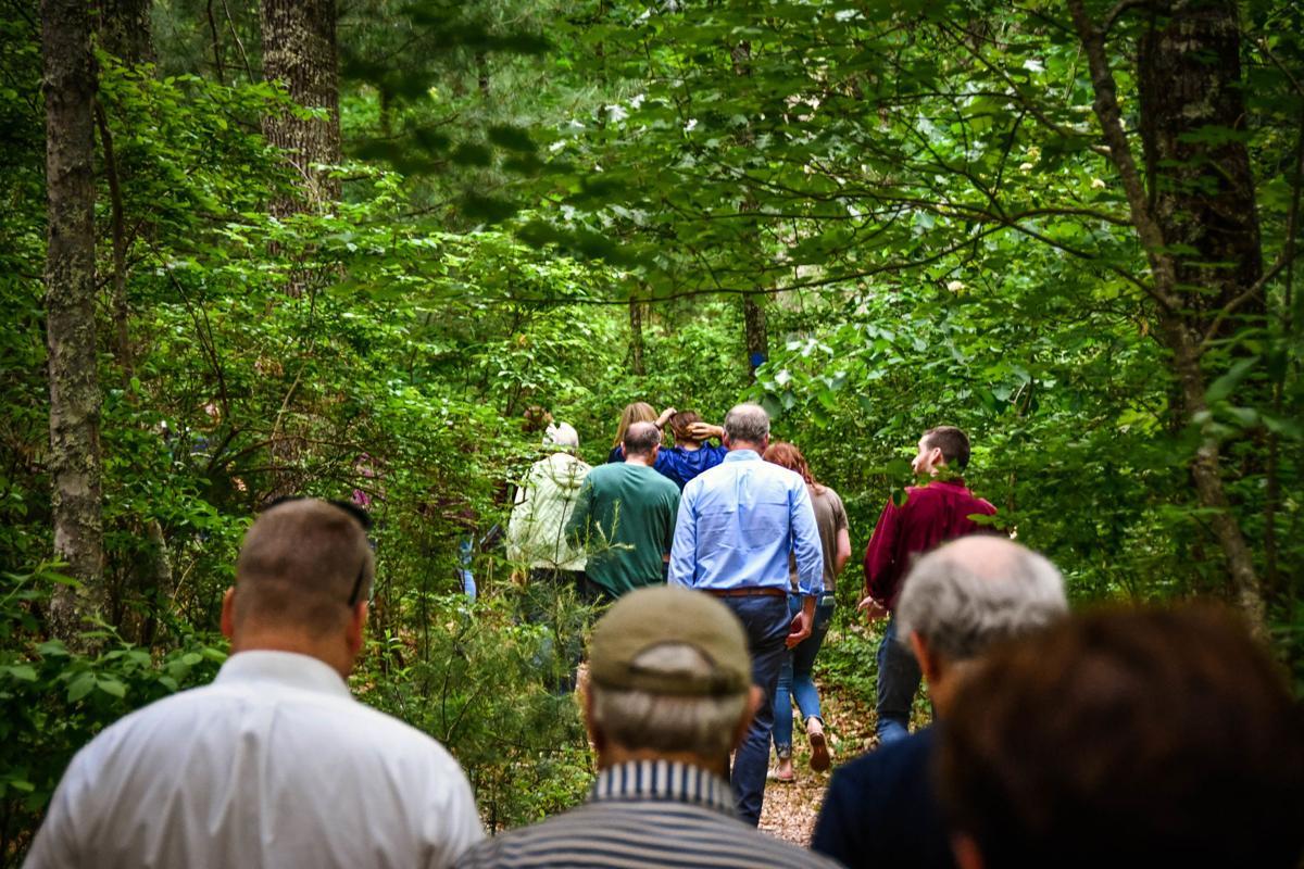 Oak Knoll #6--on the new trail