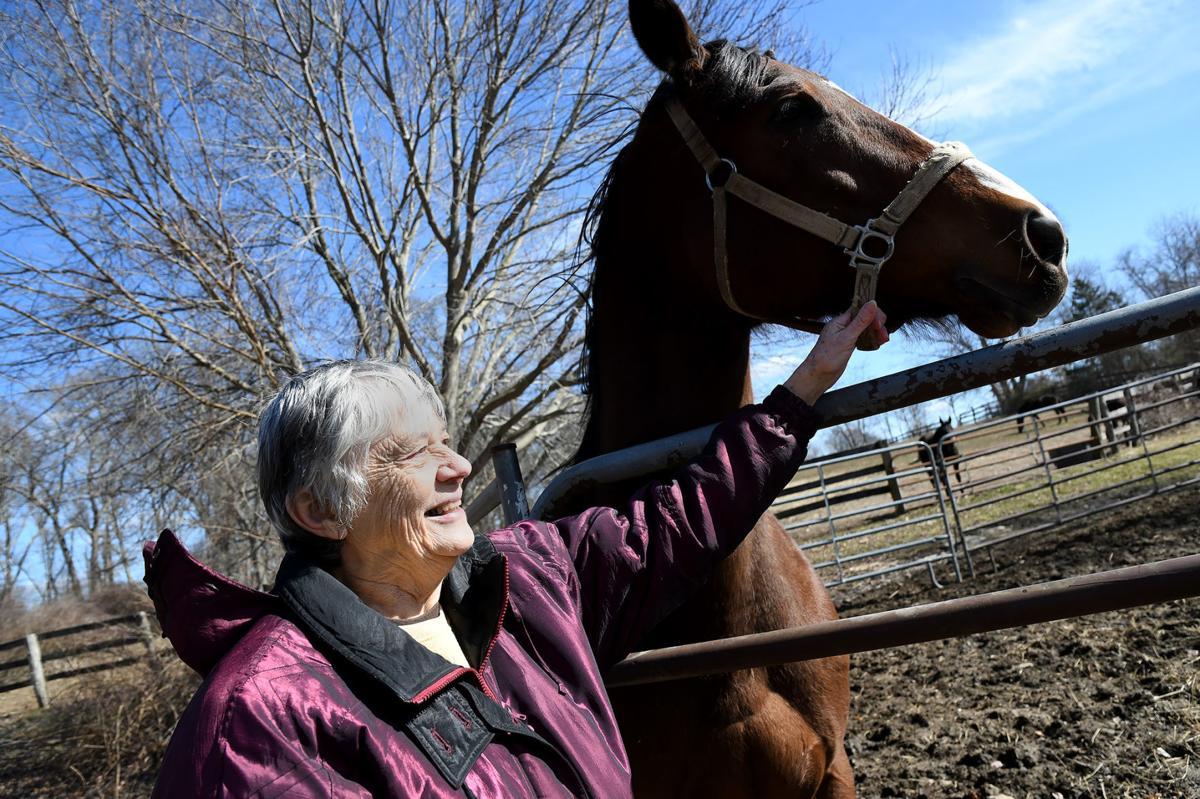 Briar Hill Horse Farm