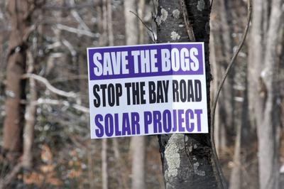 Save the Bogs Sign Norton
