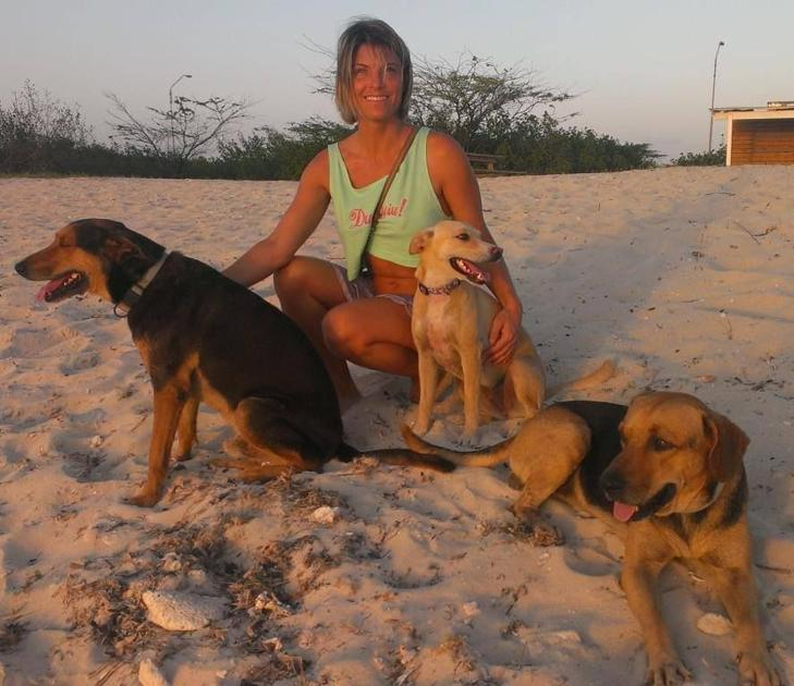 Judge To Rule In Case Of Dog Brought From Aruba To North -5615