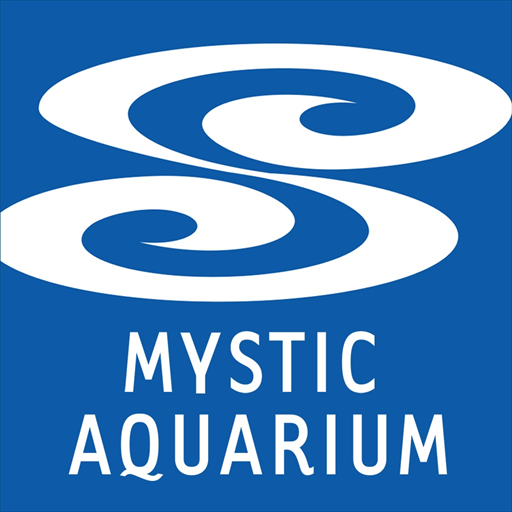 Mystic Aquarium's FINtastic Family Events Series  Gets Spring Fever this April Vacation