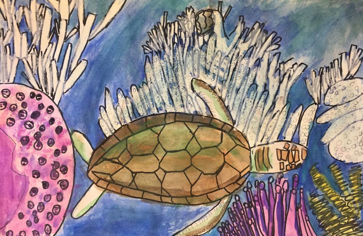 aam high school Hailie Leonard_Turtle Scape1