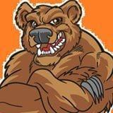 O-W Bruins Logo