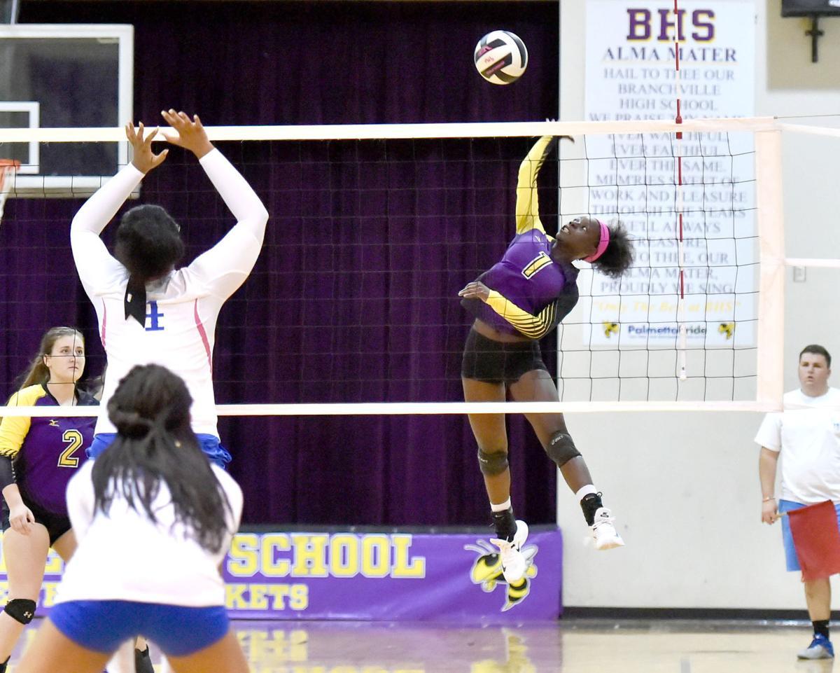 Branchville volleyball