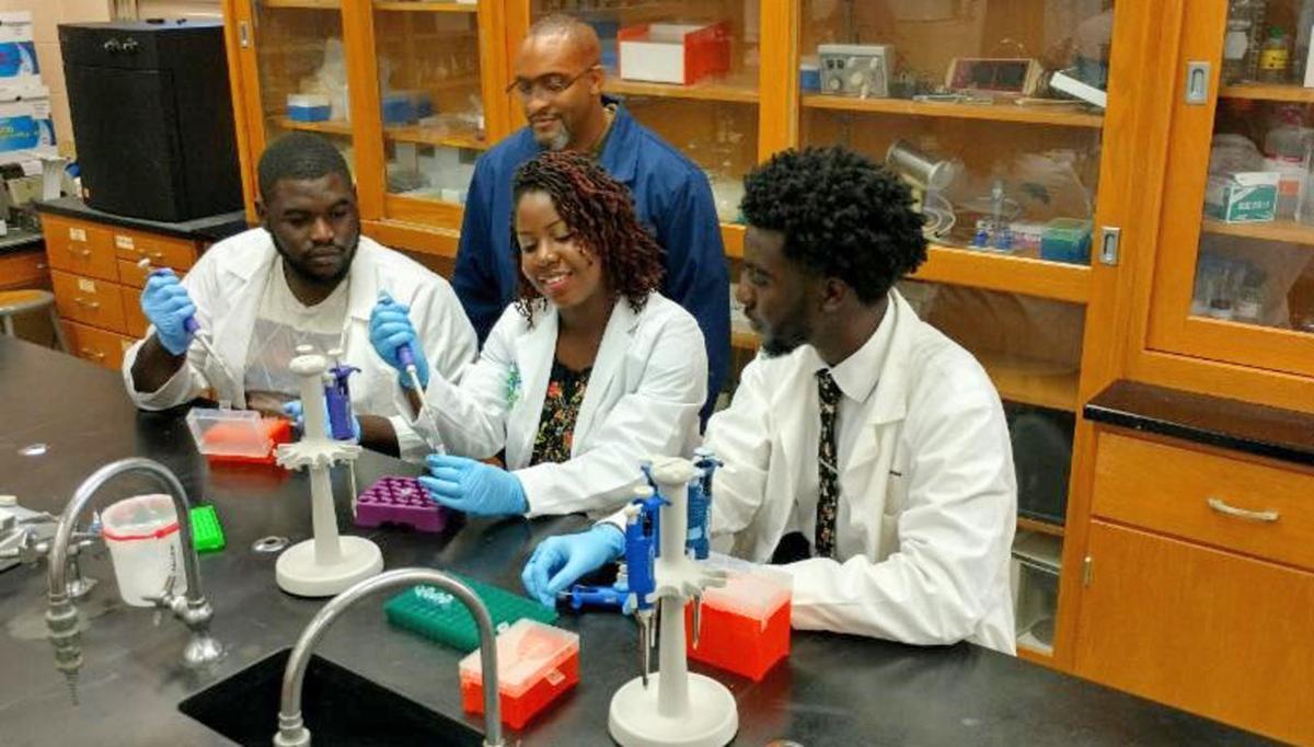 Claflin undergraduate research
