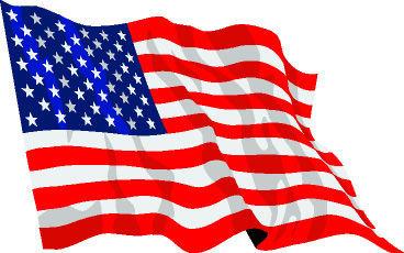 American flag illustration (copy)