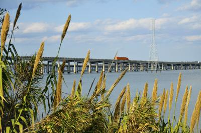 Lake Marion Bridge (copy)