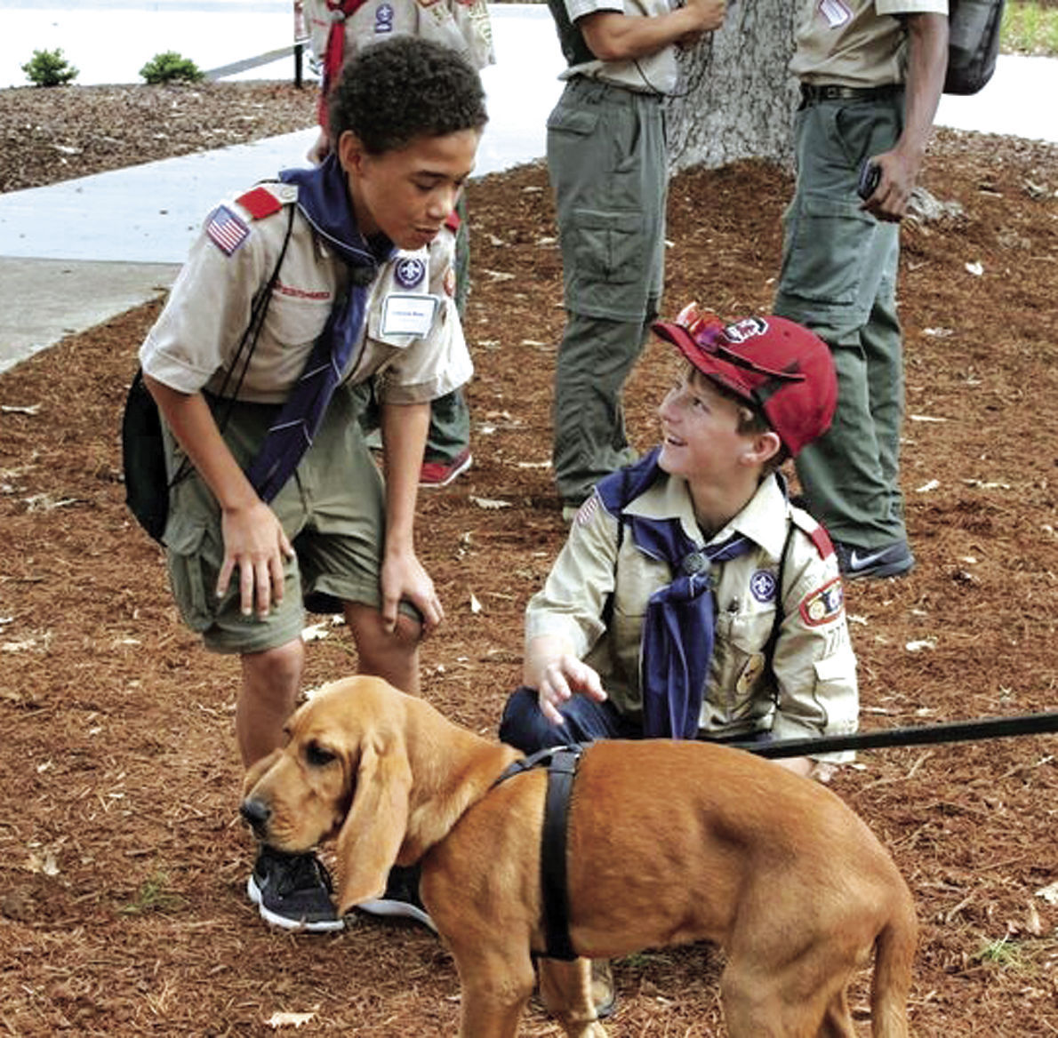 Boy Scouts and bloodhounds