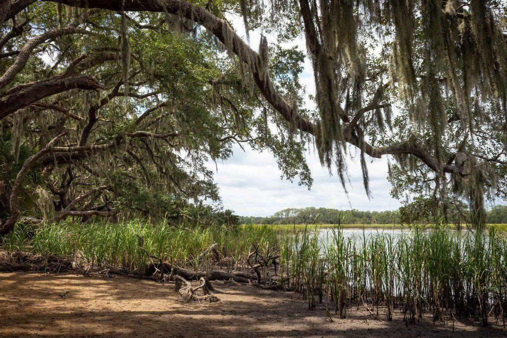 FARM clemson waterways 1.jpg