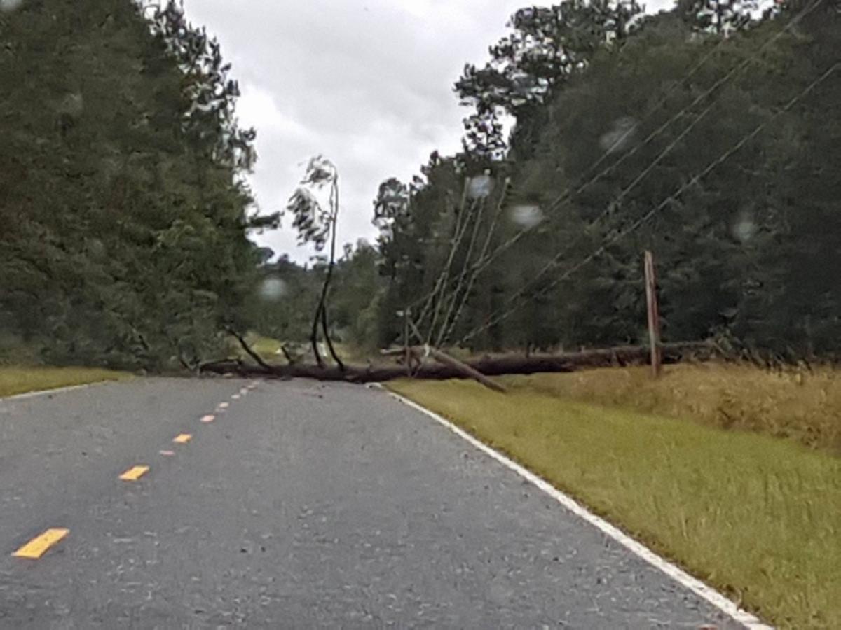Cattle Creek Road