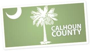 LIBRARY calhoun county logo