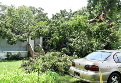 Storm blows tree onto home
